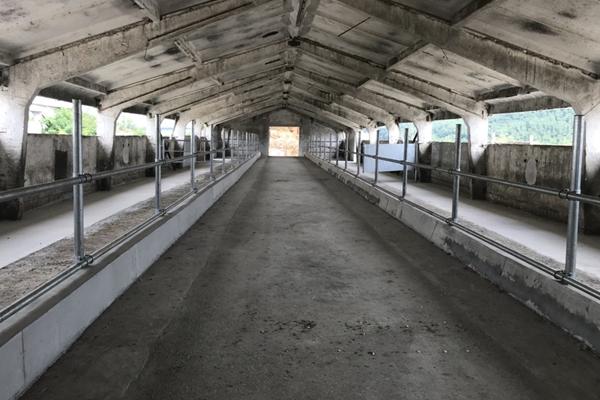 Ферма - с. Горна Росица